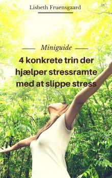Miniguide- sådan hjælper du en stressramt af Lisbeth Fruensgaard