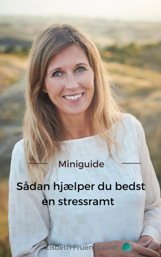 Miniguide, Sådan hjælper du bedst en stressramt, af stresscoach og forfatter Lisbeth Fruensgaard