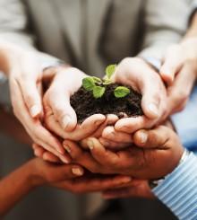 Trivsel og vækst i teamet - når temaet tager lederskab for en stressfri hverdag