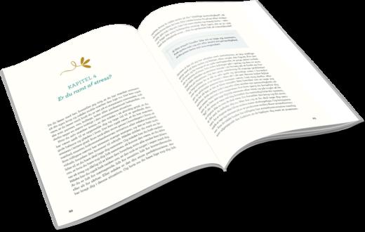 Kuren mod stress - sådan slipper du stress for altid. Bog af stressekspert og forfatter Lisbeth Fruensgaard. Udkommer 15. november